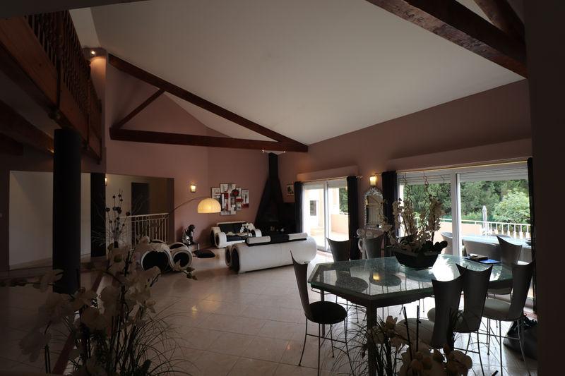 Photo Villa Saint-Clément-de-Rivière Saint clément de rivière,   achat villa  7 chambres   350m²
