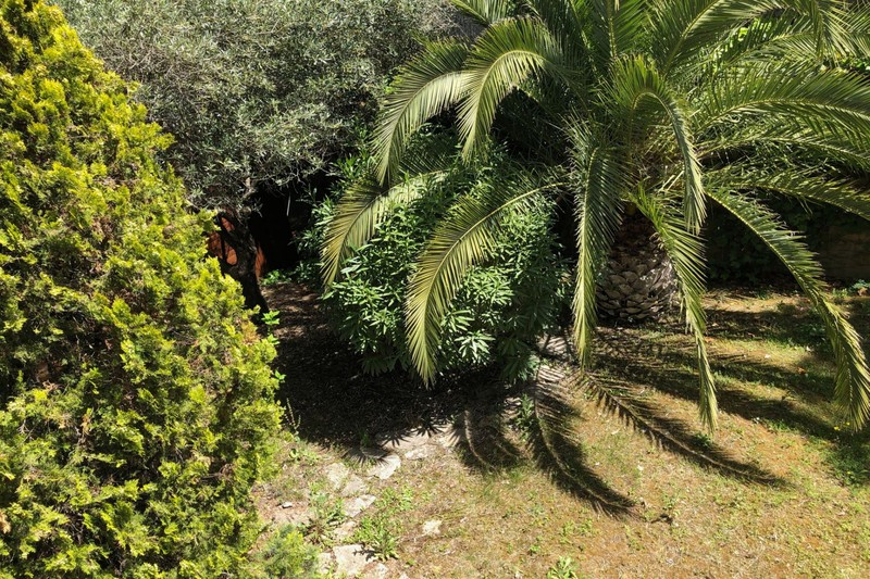 Photo Terrain Castelnau-le-Lez   achat terrain   800m²
