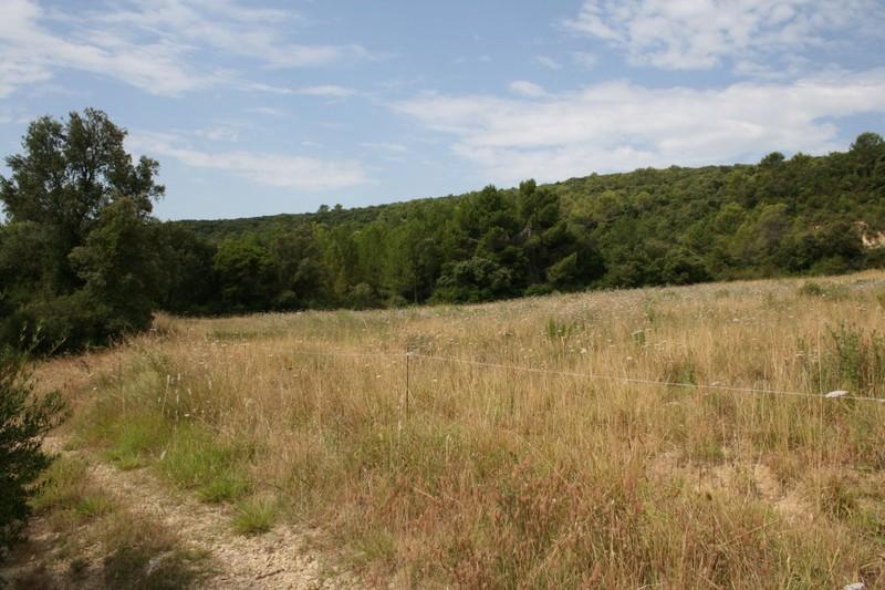 Photo Terrain Montarnaud Montarnaud,   achat terrain   17500m²