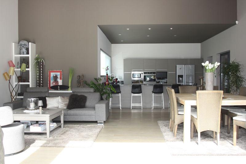 Photo Villa Montpellier Castries,   achat villa  5 chambres   266m²