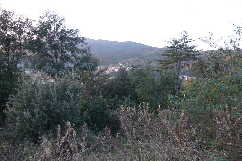 Terrain Amélie-les-Bains-Palalda Village,   achat terrain   445m²