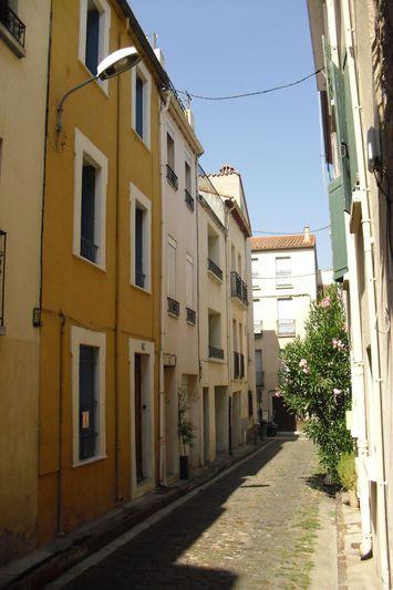 Photo Maison en pierre Céret Centre-ville,   achat maison en pierre  3 chambres   93m²