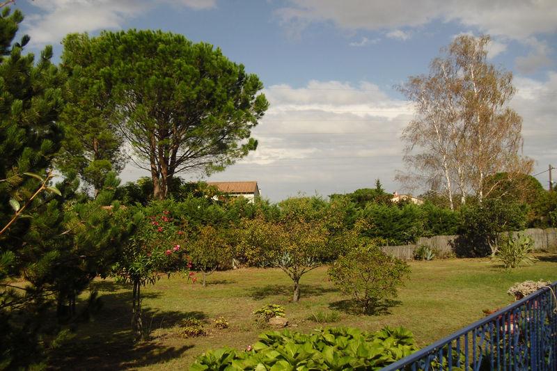 Terrain Saint-Génis-des-Fontaines Les albères,   achat terrain   1169m²