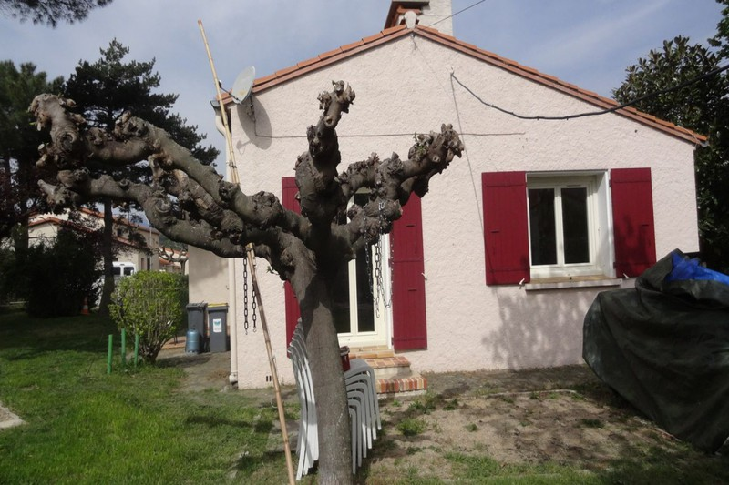 Photo Maison Céret Vallespir,   achat maison  4 chambres   110m²