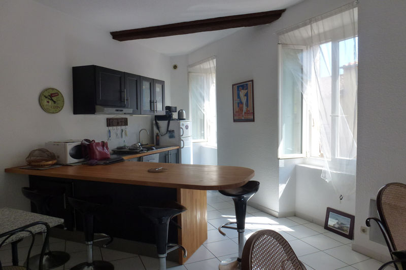 Photo Apartment Céret Vallespir,   to buy apartment  3 rooms   58 m²