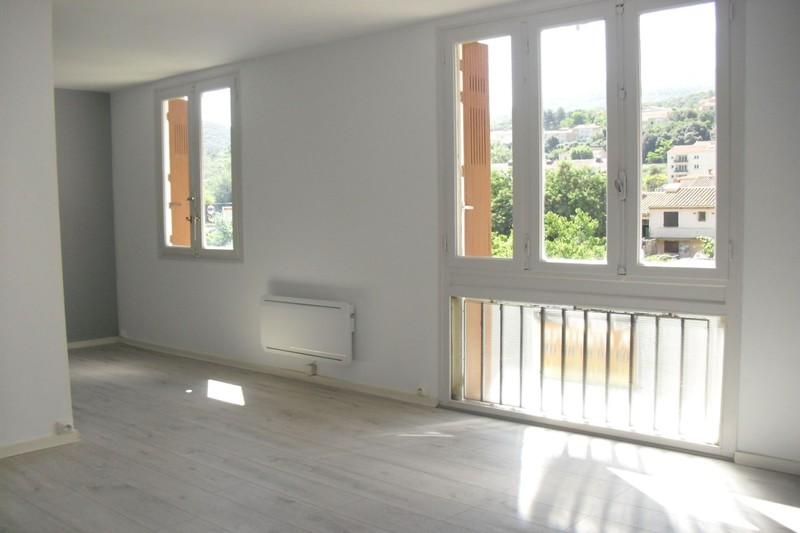 Appartement Amélie-les-Bains-Palalda Vallespir,   achat appartement  3 pièces   63m²