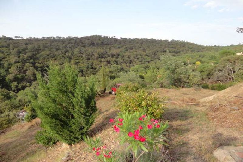 Land Le Boulou Les albères,   to buy land   1800 m²