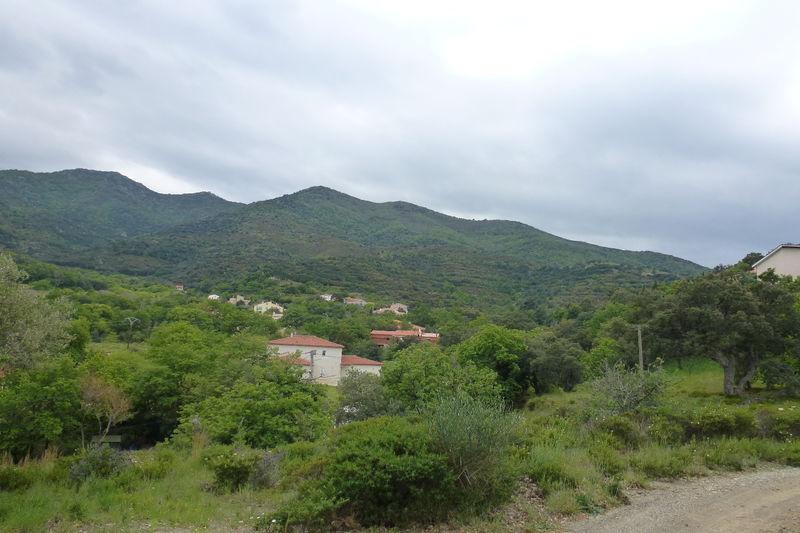 Terrain à bâtir Montesquieu-des-Albères Les albères,   achat terrain à bâtir   2000m²