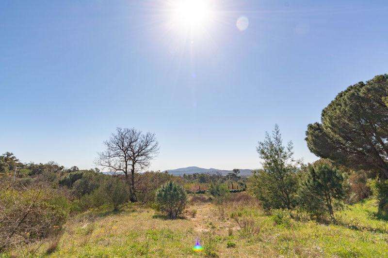 Vente terrain à bâtir Grimaud  Land Grimaud Golfe de st tropez,   to buy land   2533m²