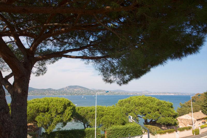 Vente villa Gassin  Villa Gassin Golfe de st tropez,   to buy villa  5 bedroom   165m²