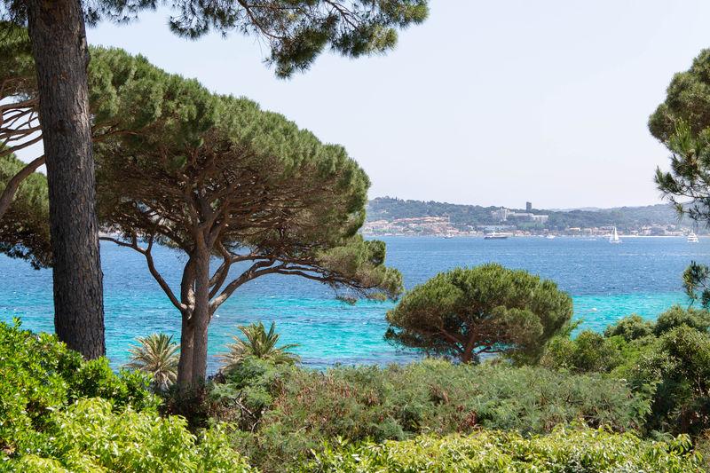 Vente villa Grimaud  Villa Grimaud Golfe de st tropez,   to buy villa  6 bedroom   320m²