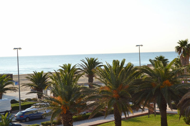 Photo n°1 - Vente appartement Canet-en-Roussillon 66140 - 81 000 €
