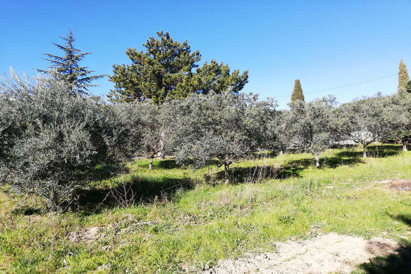 Land Saint-Cyr-sur-Mer   to buy land   800 m²