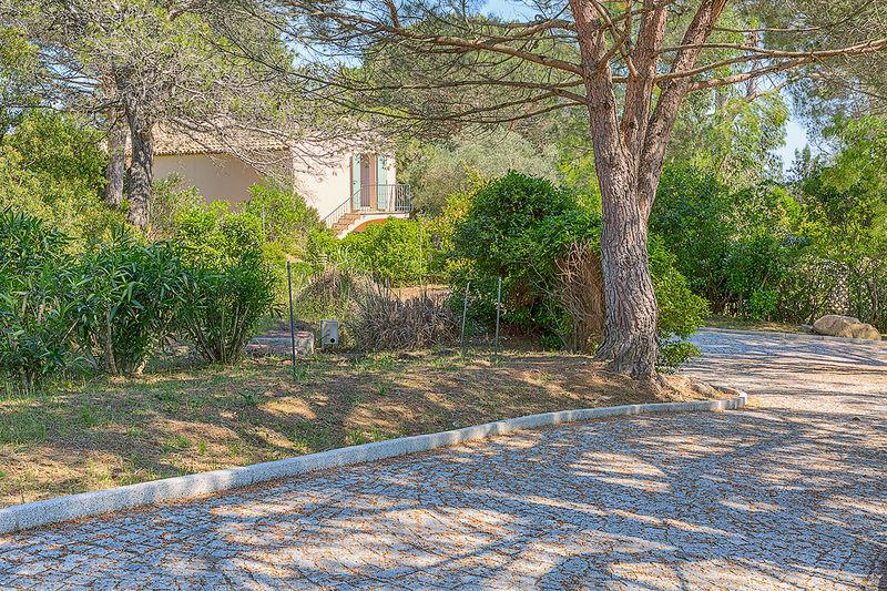 Photo n°5 - Vente Maison propriété Saint-Tropez 83990 - Prix sur demande