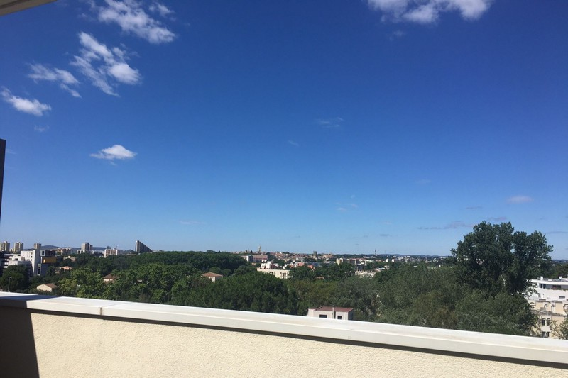 Photo Appartement Montpellier   achat appartement  1 pièce   20m²