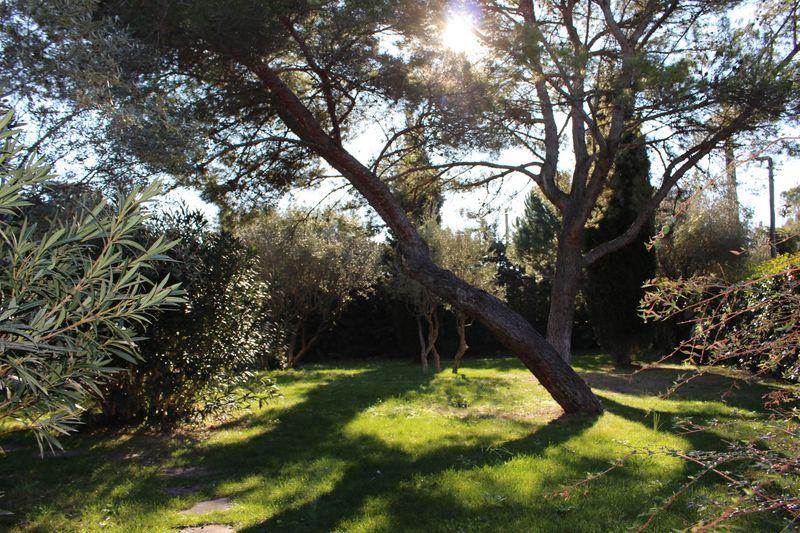 Photo Villa Montpellier Montpellier plan des 4 seigneurs,   achat villa  6 chambres   380m²