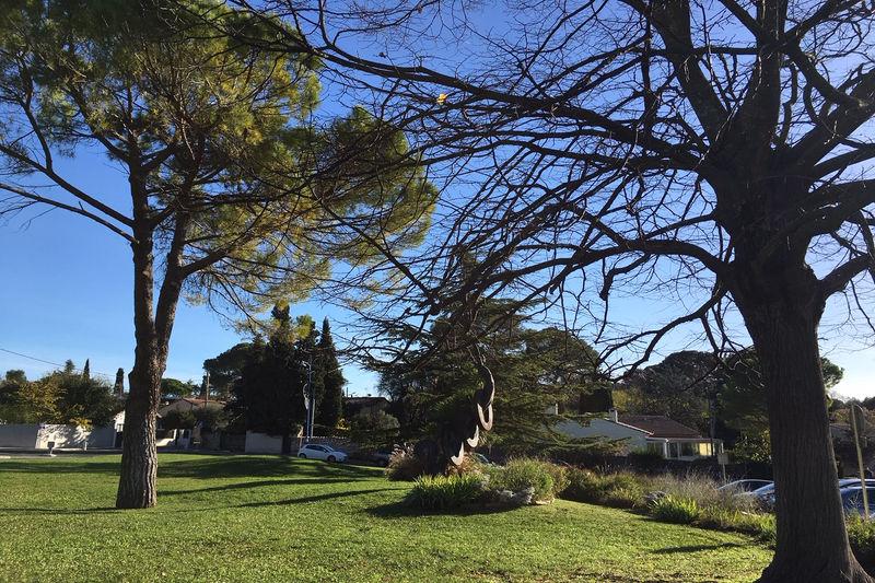 Photo Villa Castelnau-le-Lez   achat villa  3 chambres