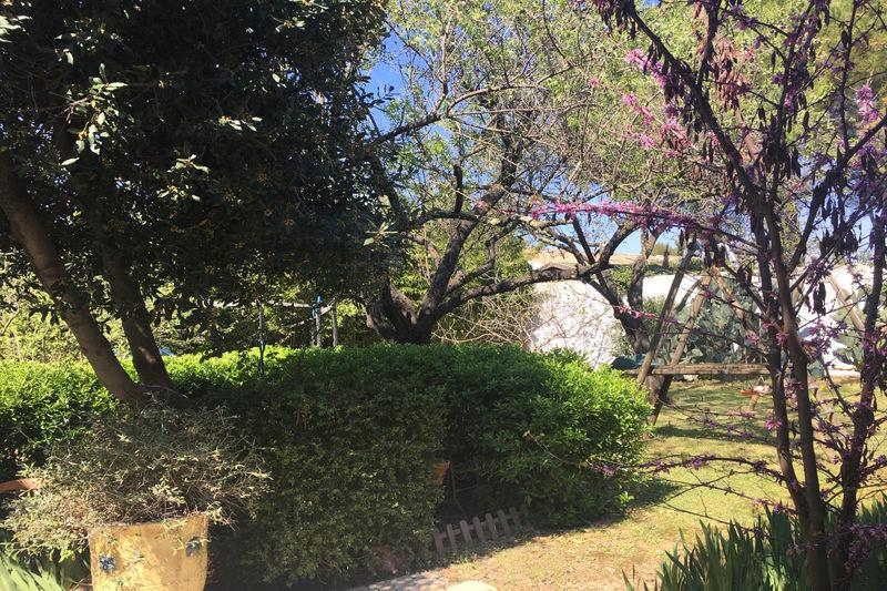 Photo n°2 - Vente Maison villa Castelnau-le-Lez 34170 - 1 150 000 €