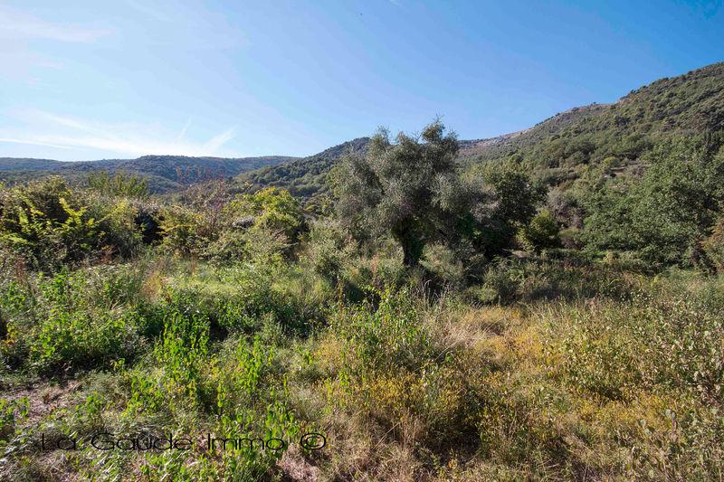 Land Carros   to buy land   1117m²