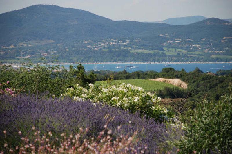 Villa Gassin À la campagne,  Location saisonnière villa  6 chambres   320m²