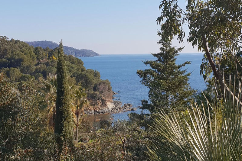 Photo Villa provençale La Croix-Valmer Bord de mer,   achat villa provençale  3 chambres   140m²