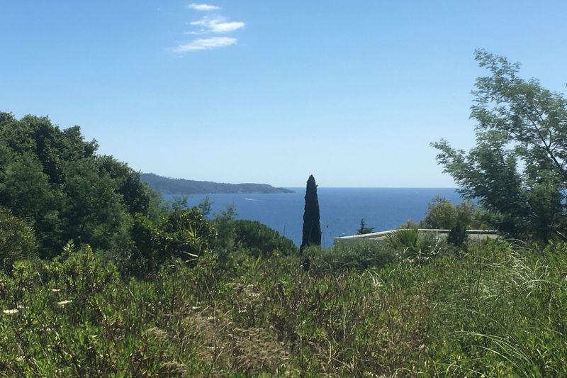 Photo n°5 - Vente terrain Cavalaire-sur-Mer 83240 - 1 456 000 €