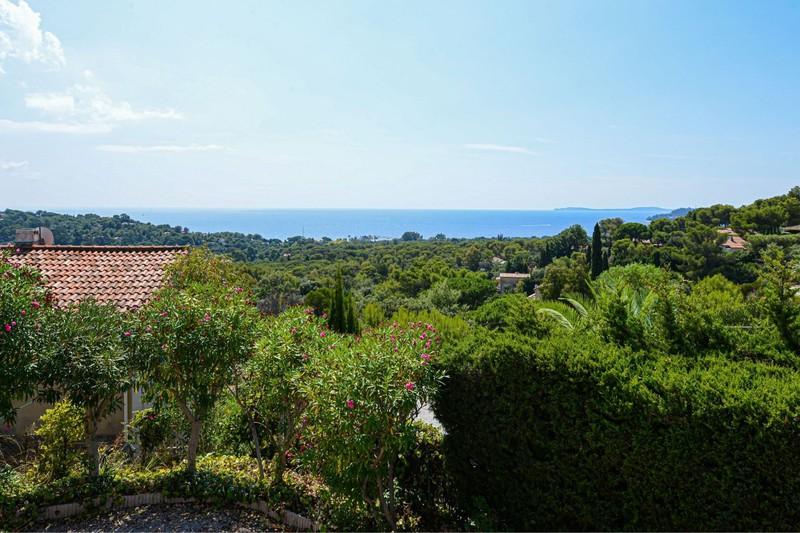 Photo n°7 - Vente terrain Cavalaire-sur-Mer 83240 - 1 456 000 €