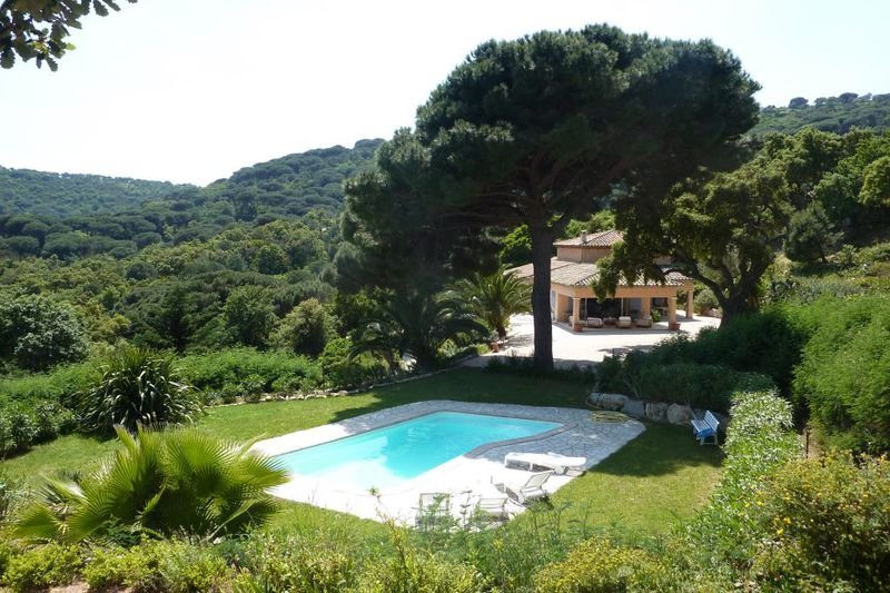 Photo Propriété Ramatuelle Golfe de st tropez,   to buy propriété  5 bedrooms   300 m²