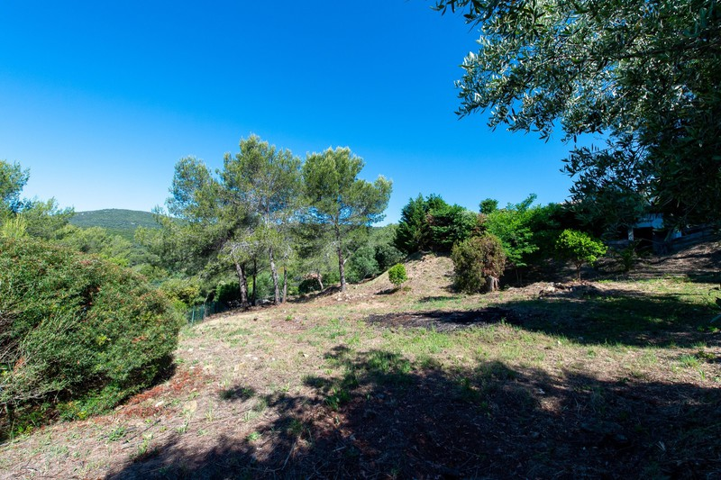 Photo n°3 - Vente Maison propriété La Croix-Valmer 83420 - 2 150 000 €