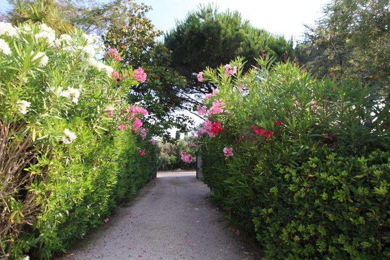 Photo n°4 - Vente Maison villa Saint-Tropez 83990 - 5 500 000 €