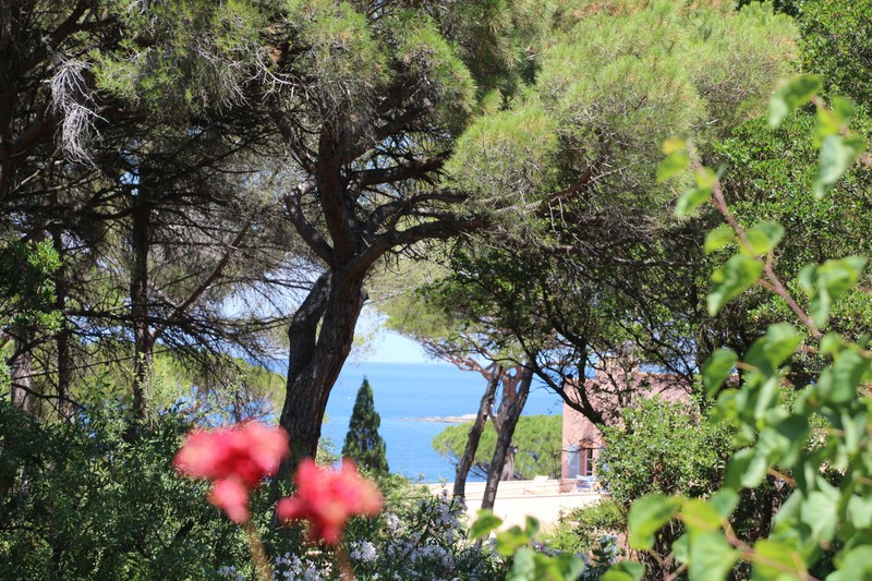 Photo Bergerie Saint-Tropez Secteur salins,   to buy bergerie  5 bedrooms   170 m²