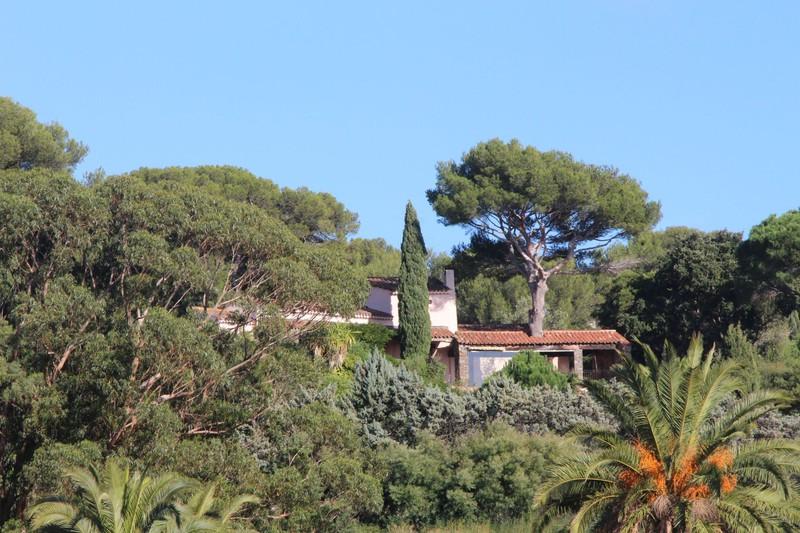 Photo n°3 - Vente Maison villa provençale La Croix-Valmer 83420 - 2 850 000 €