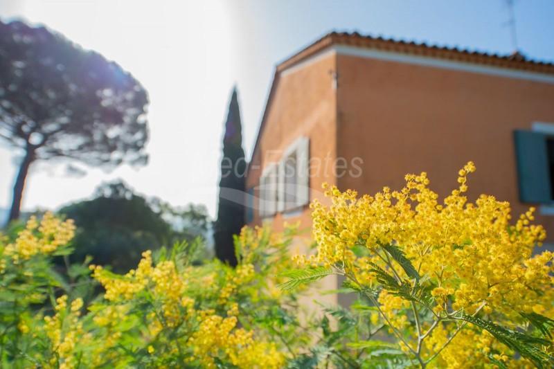 Photo n°26 - Vente maison de campagne Gassin 83580 - 2 550 000 €