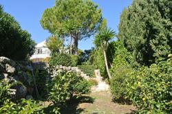 Photos  Maison Villa à Louer Juan-les-Pins 06160