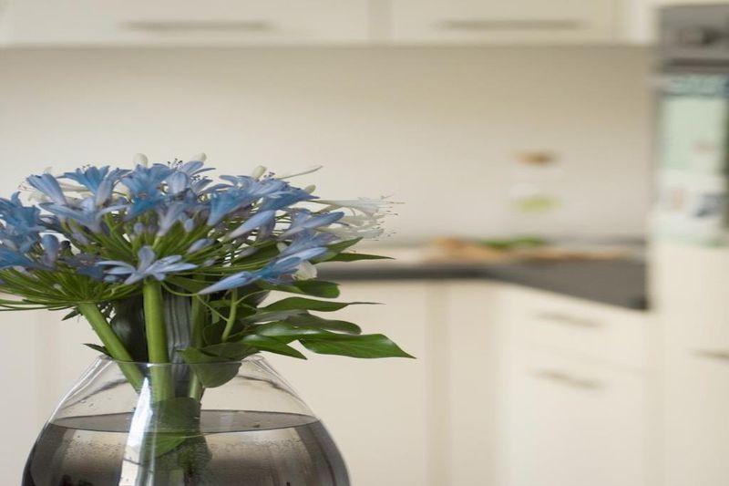 Photo n°2 - Vente appartement Nice 06300 - 179 000 €