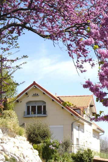 Photo Maison Apt Centre-ville,   achat maison  6 chambres   226m²