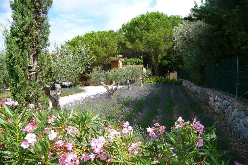 Photo n°15 - Vente Maison villa Tourrettes 83440 - 890 000 €