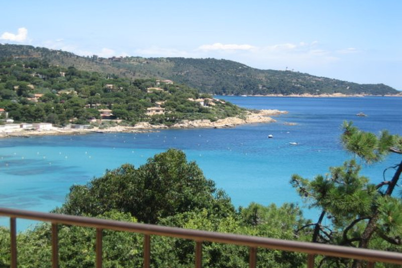 Photo Villa Ramatuelle Front de mer,   achat villa  4 chambres   203m²