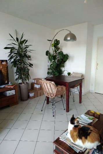 Photo Appartement Montpellier  Location appartement  3 pièces   63 m²