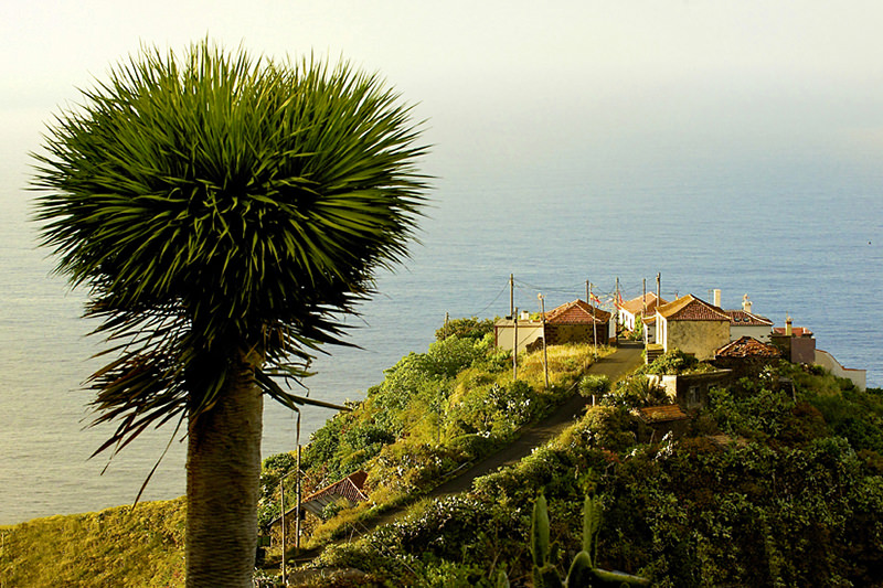 Photos La Palma - Canary Islands - Spain
