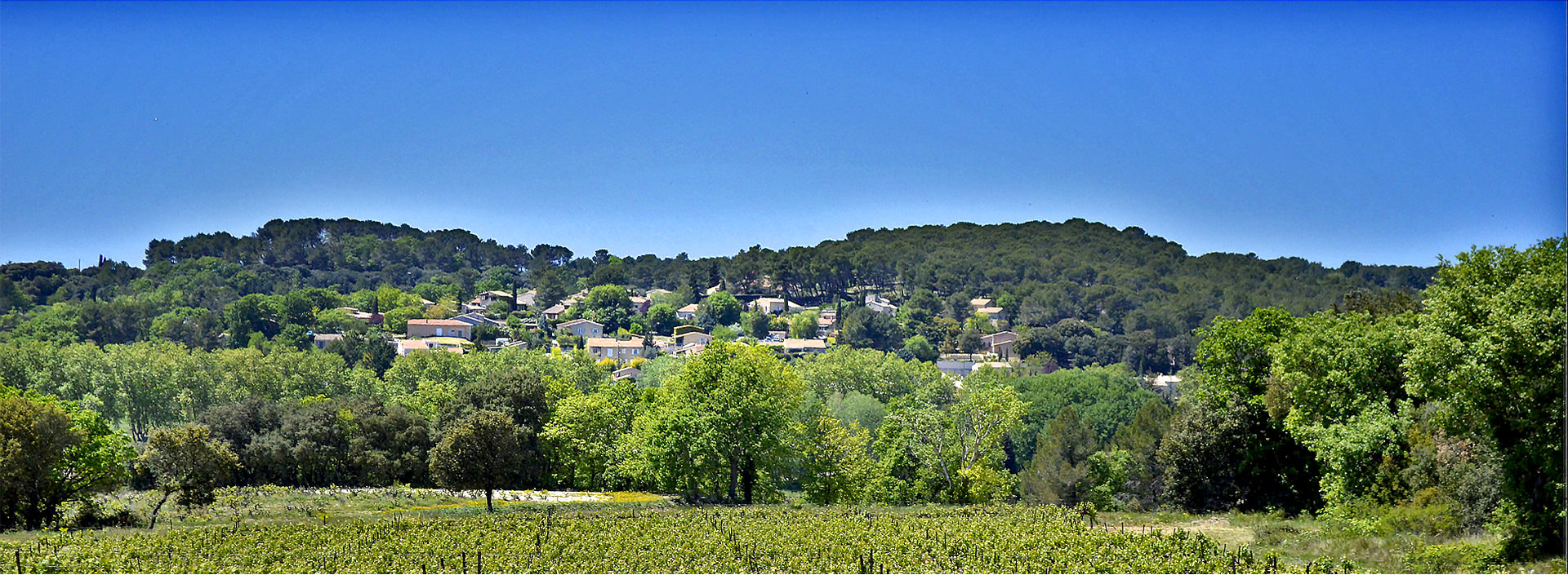 Rognes et Saint-Cannat