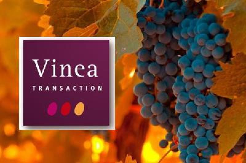 Photos Vinea Transaction