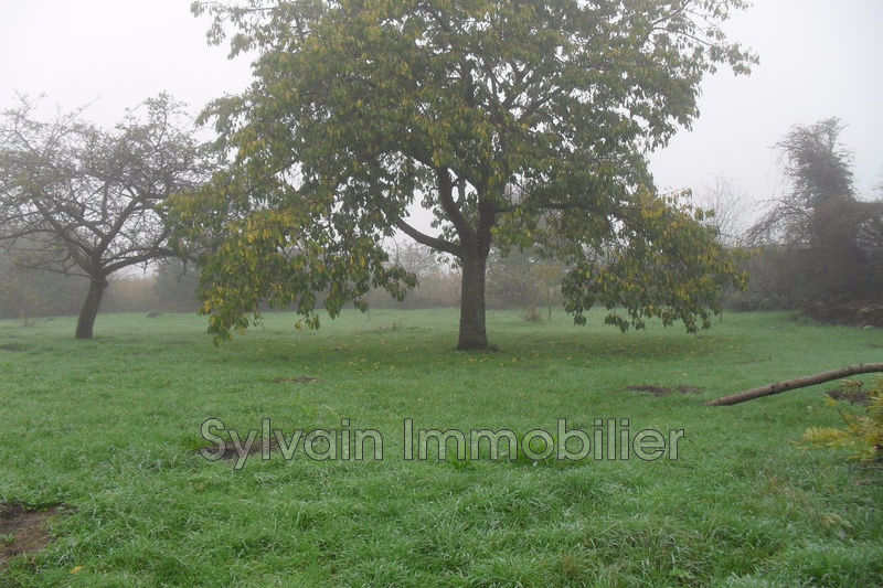 Photo Terrain Savignies Savignies,   achat terrain   810 m²