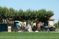 Vente Maisons - Villas Rognonas Photo 3