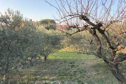 Vente terrain Saint-Rémy-de-Provence