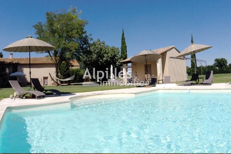 Mas Raphèle-lès-Arles   achat mas  6 chambres   400m²