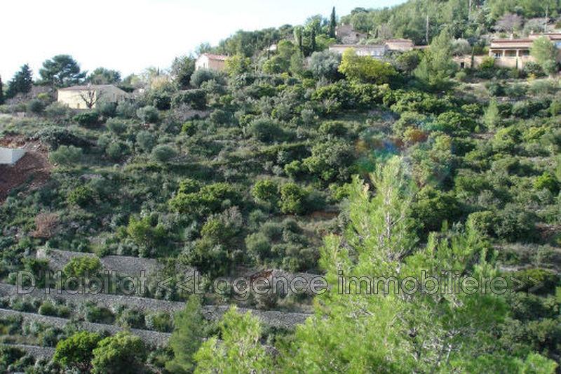 Photo Terrain Toulon Ouest,   achat terrain   6250m²