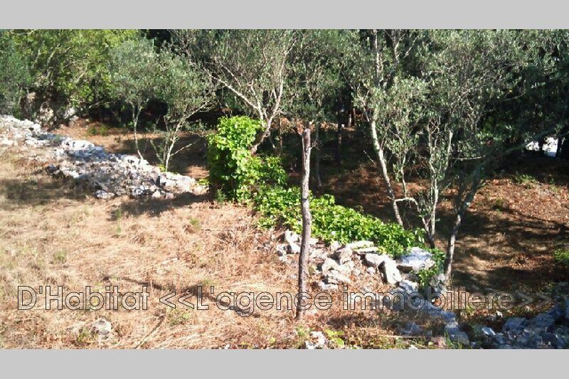 Photo n°1 - Vente terrain à bâtir Besse-sur-Issole 83890 - 159 000 €