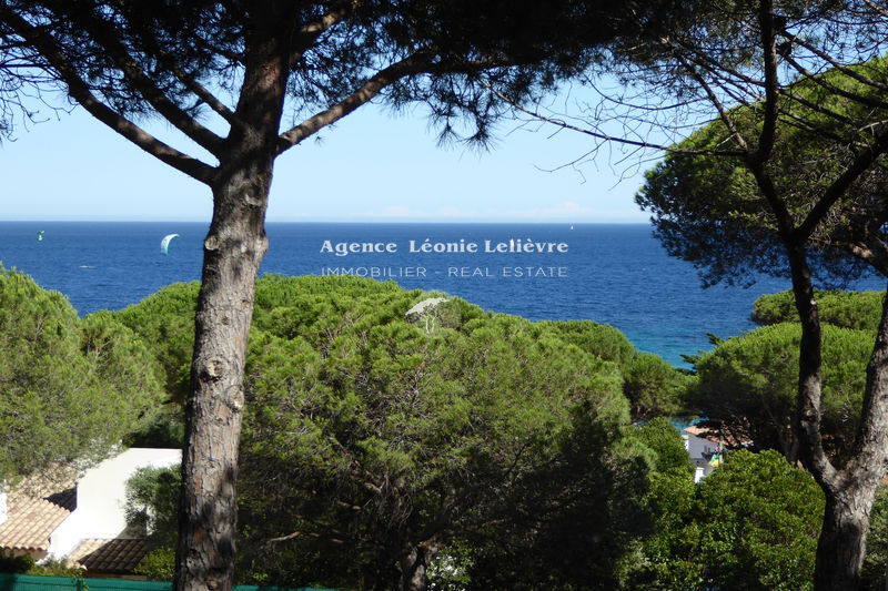 Photo Apartment Sainte-Maxime   to buy apartment  2 rooms   25 m²