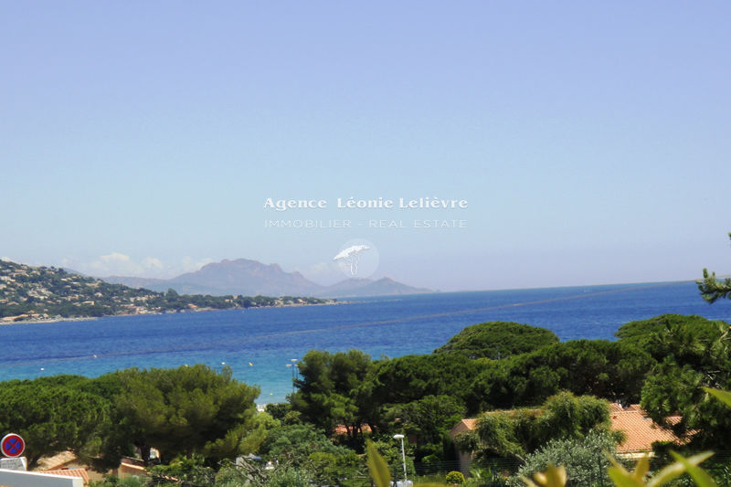 Photo Apartment Sainte-Maxime   to buy apartment  2 rooms   45 m²